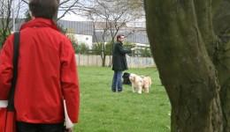 Bei gutem Wetter waren natürlich wieder viele Hundebesitzer unterwegs.
